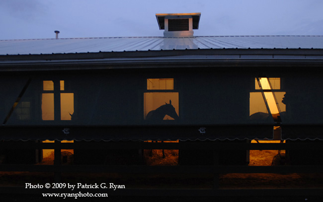 Stakes Barn227 copy