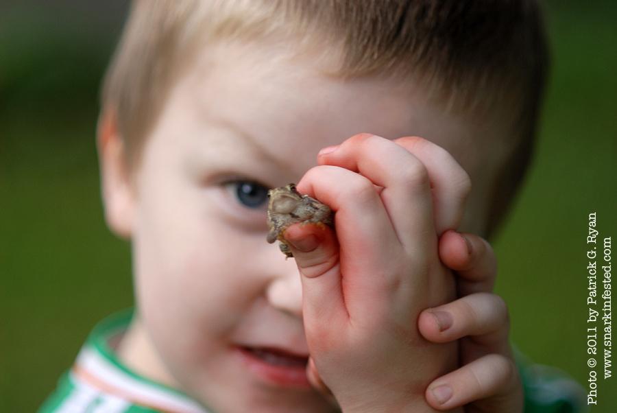 Eamonn & frog 3.216*
