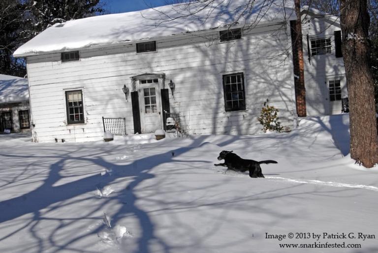 Jenny Runs In Snow*103