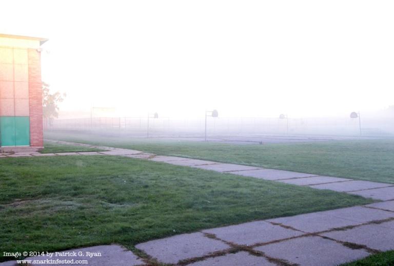 Fog*901 092414